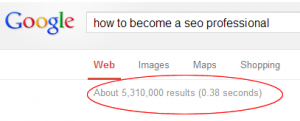 Google SEO professional search